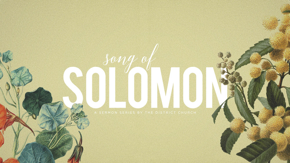 Solomon_Graphic_Small.jpg