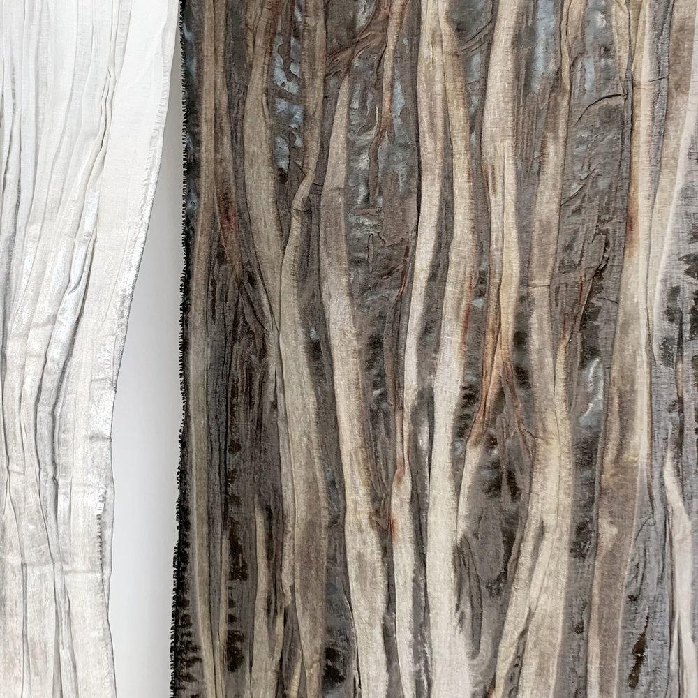 E1491  HAUNTED FOREST Bark