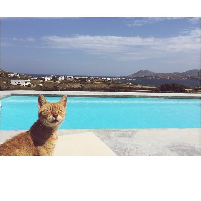 Hello Milos! #Milos #Greece #Cyclades (at Pollonia, Milos, Greece)