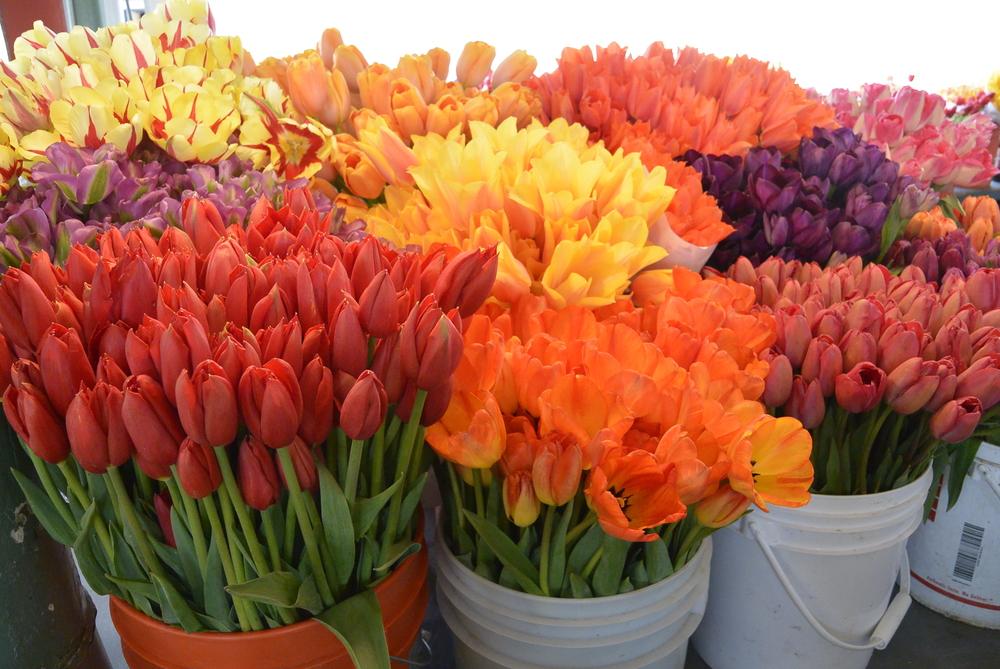 Flowers Pike place Market Seattle