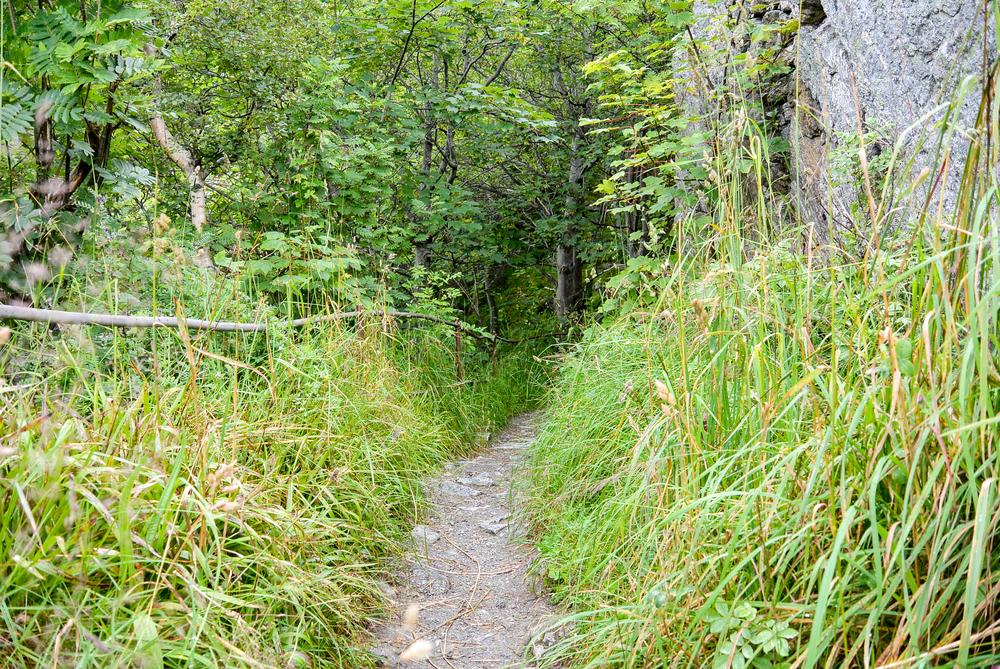 Mount Aksla Hike