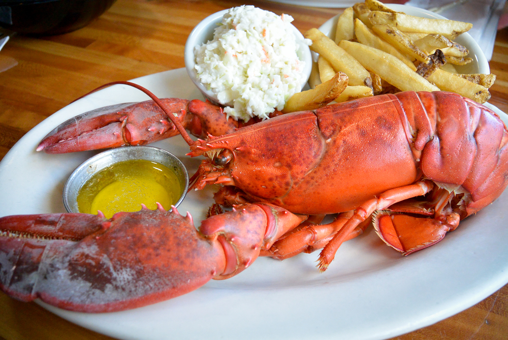 Lobster in Bar Harbor