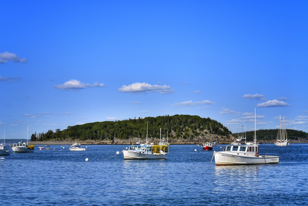 Bar Harbor Boats