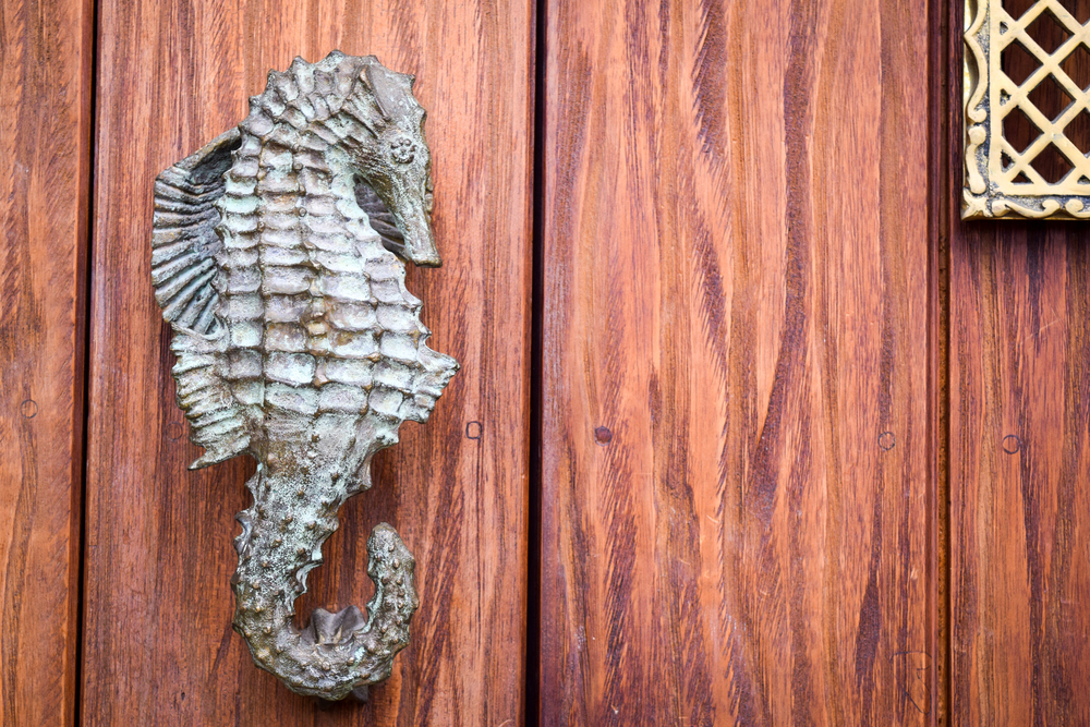Seahorse Doorknocker