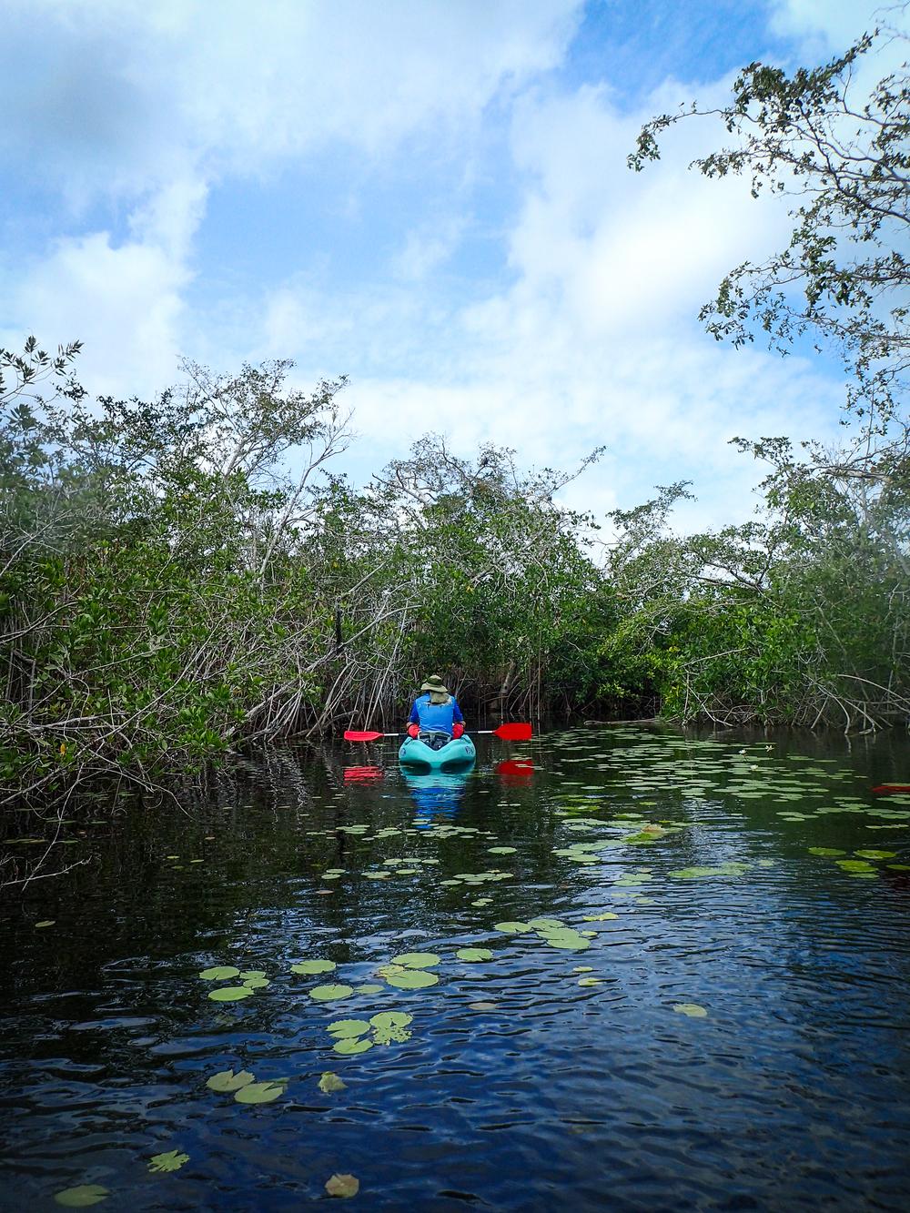 Kayaking Laguna Bacalar