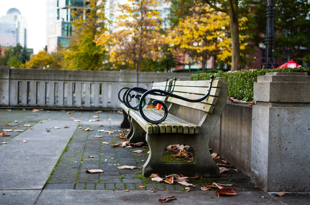 Bench on the Seawall