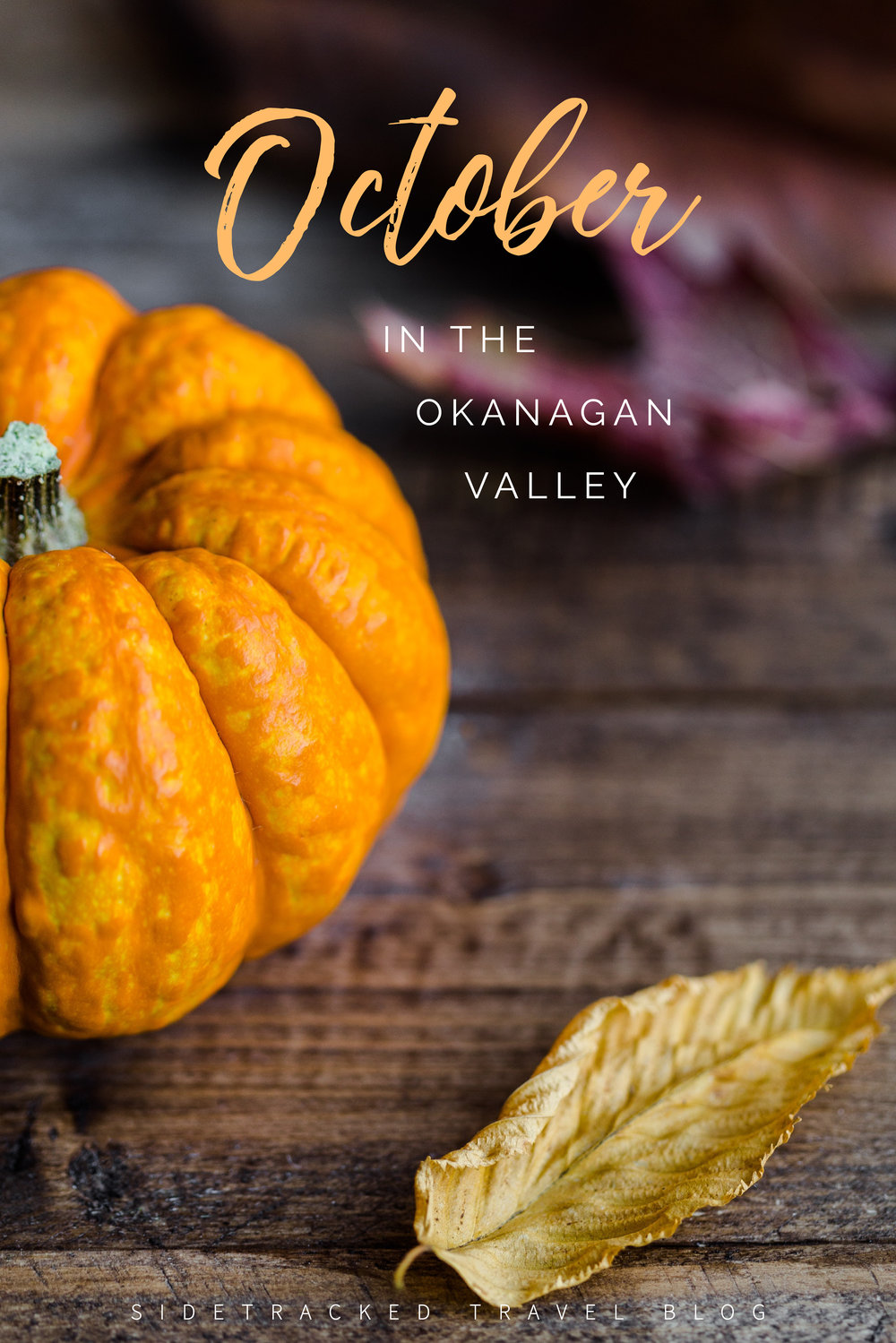 Looking for something to do in the Okanagan Valley this October? In this article you'll find a curated list of unique activities, event happenings, and other fun things taking place from now until the end of the month.