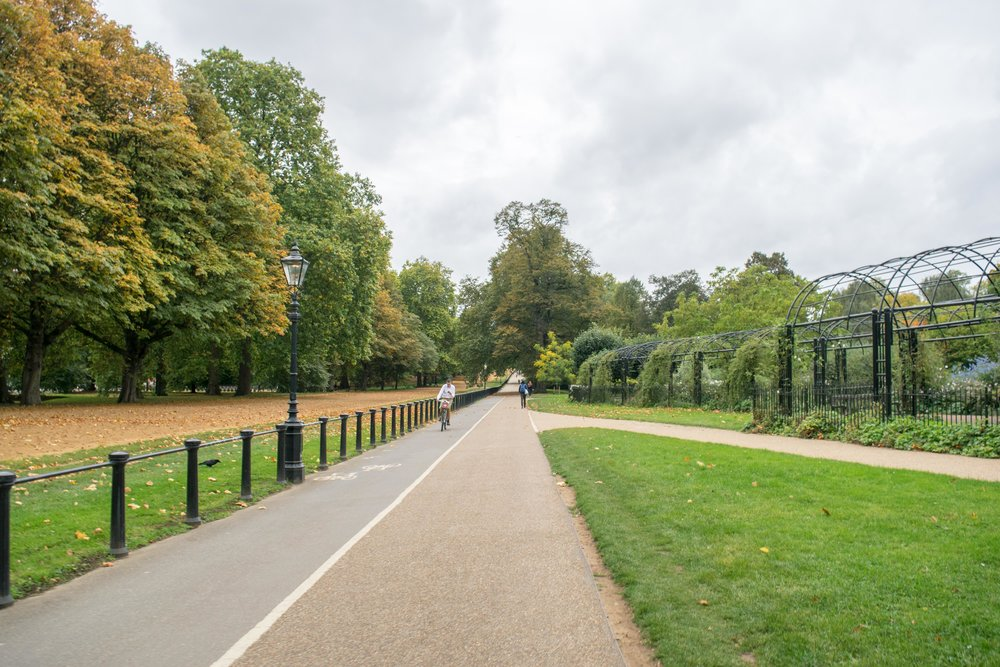 A bike path in Hyde Park