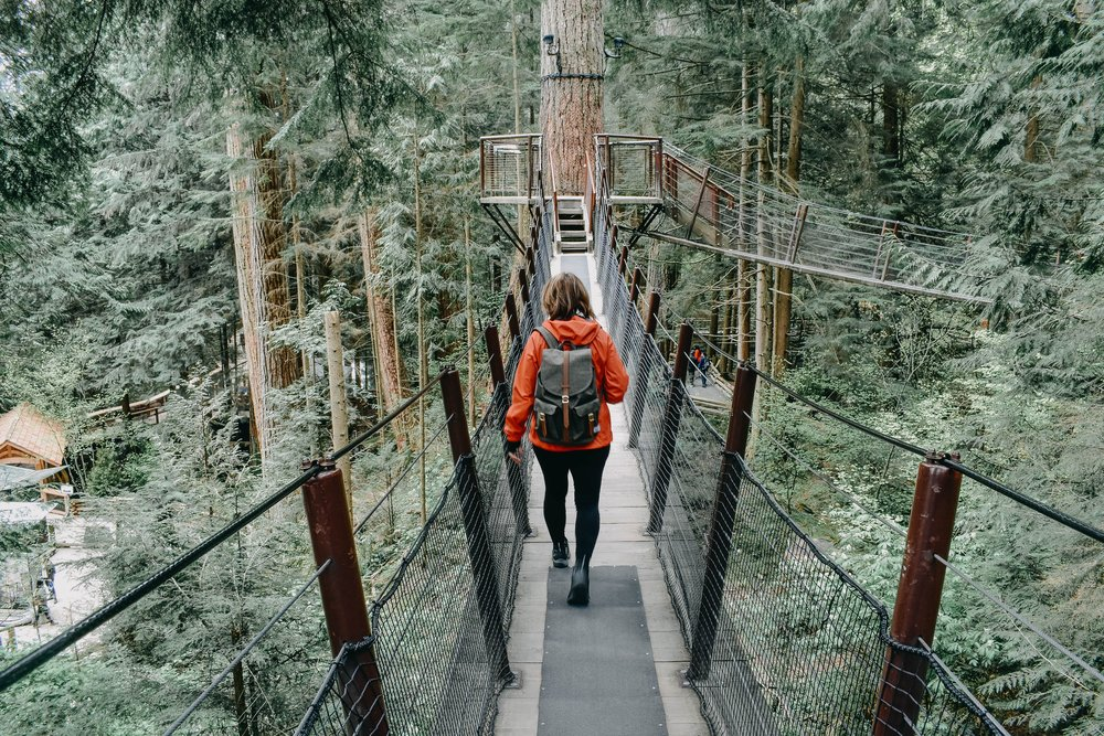 Treetops Adventure at Capilano