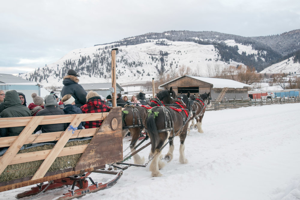 Winter Sleigh Rides at Silver Sage Stables