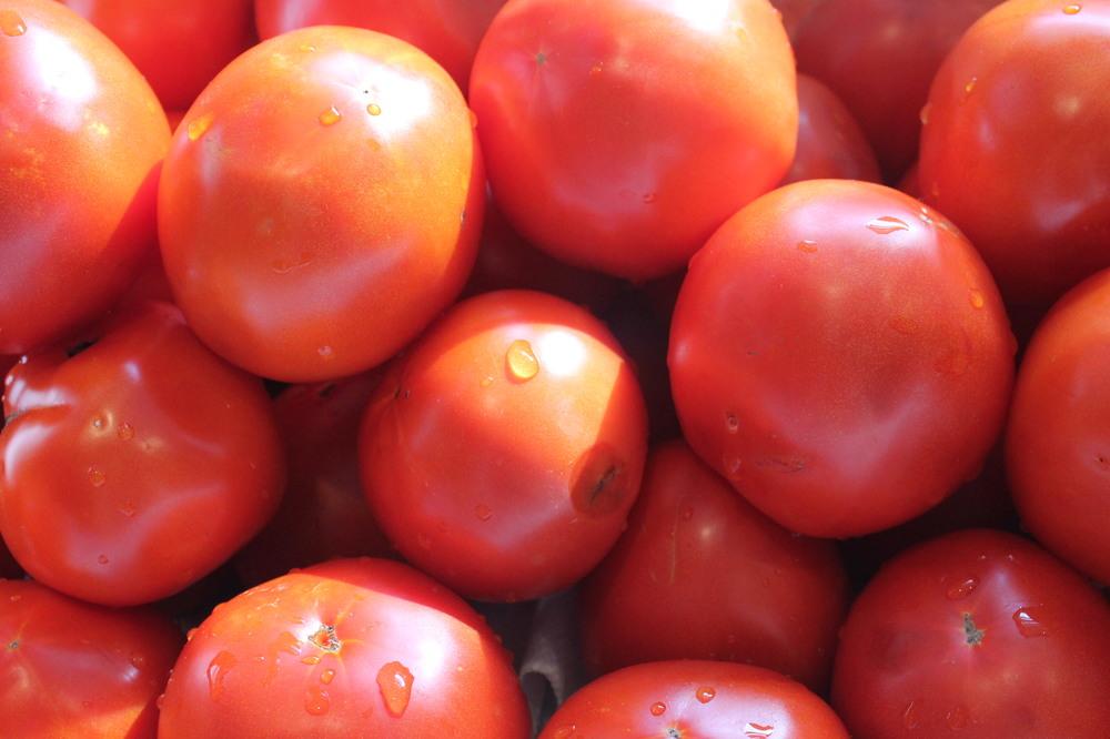 TomatoPile4.JPG