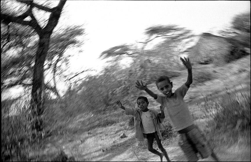 Ethio_12_05_bush.jpg
