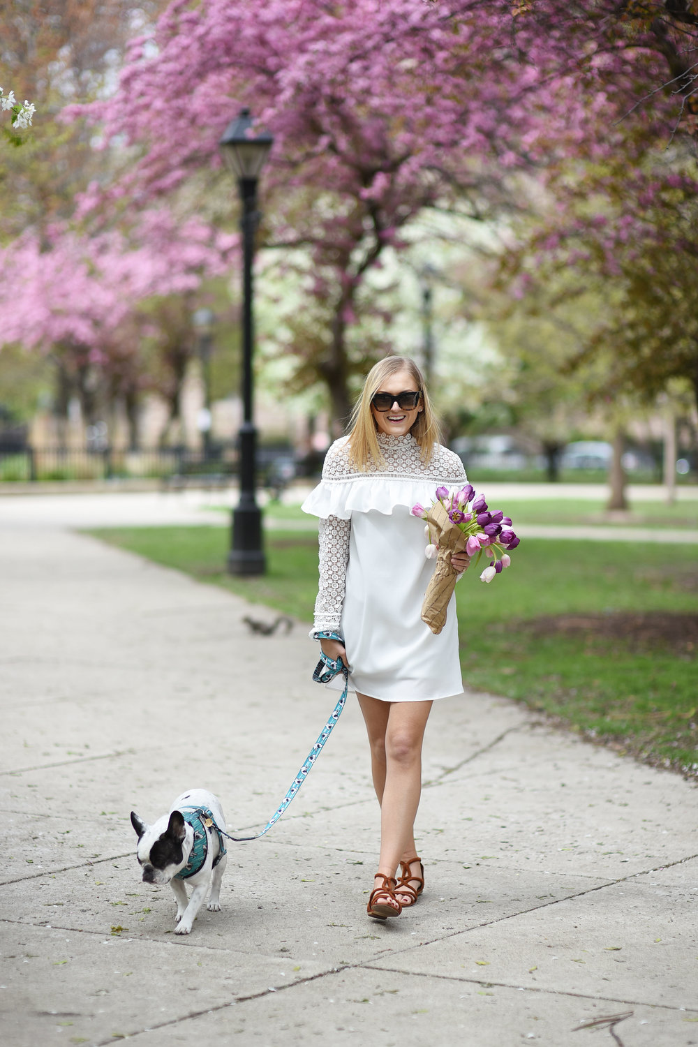 girl-in-dress-with-dog