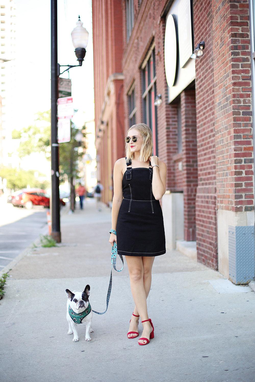 girl french bulldog walking denim dress