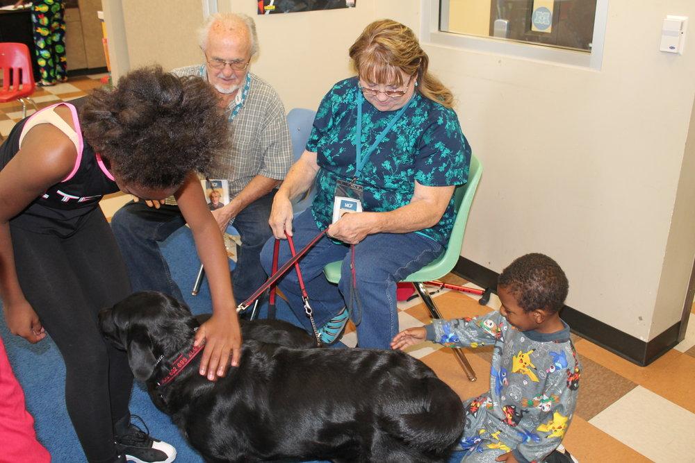 dog petting 4.jpg