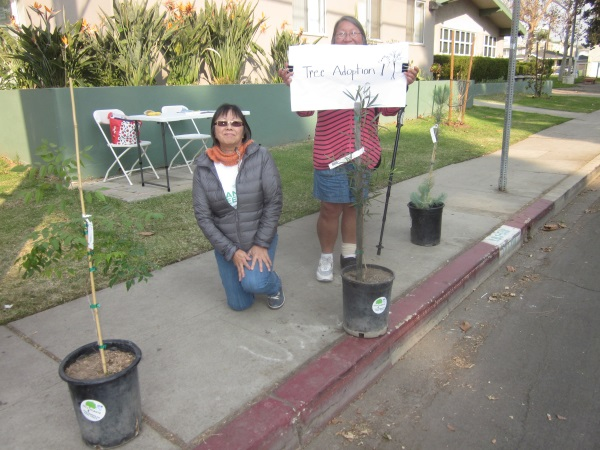 Thank you to Boardmember Rosie Kato and long-time community activist Carole Nakano, who helped the L.A. Conservation Corps give out free trees to residents today at Stoner Park.  50 trees were adopted and will be planted in our neighborhood, giving us more oxygen and greenery