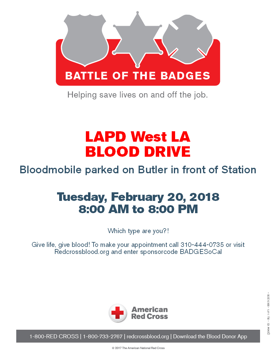 Battle of the Badges Flier 2018.jpg