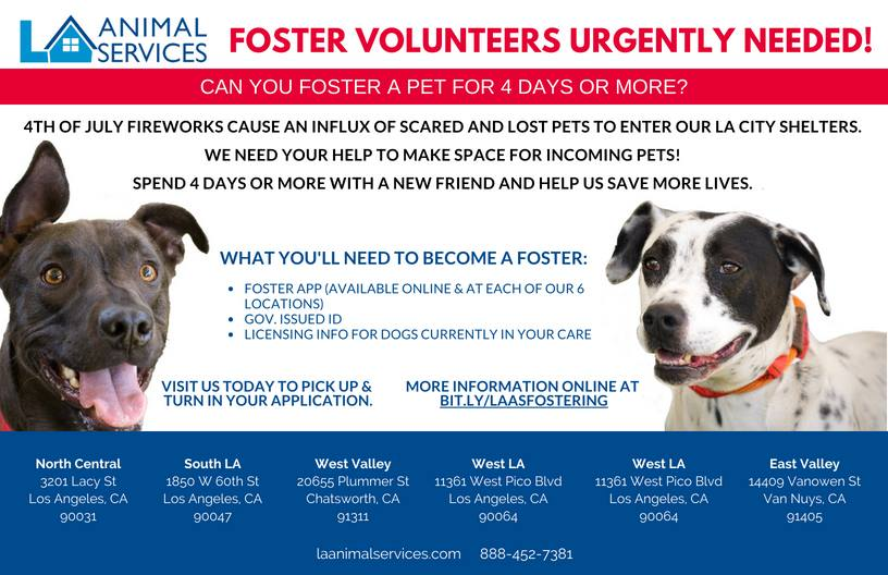La Animal Services Foster Volunteers Urgently Needed Wlasnc