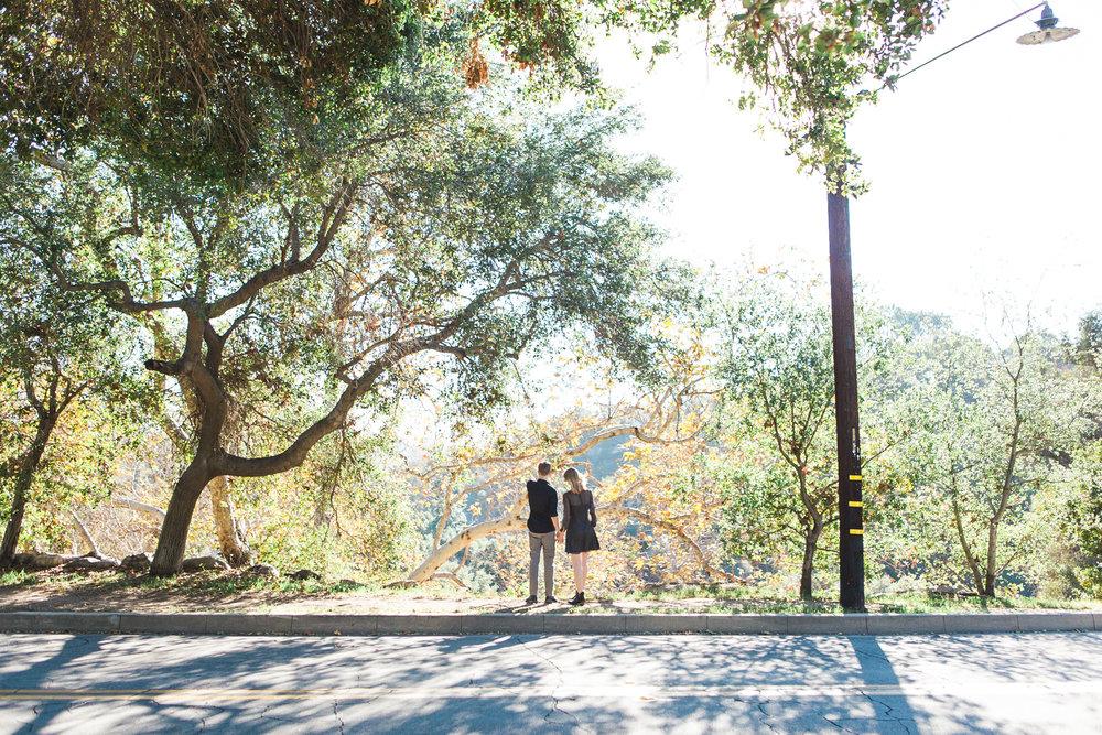 thelightandglass-wedding-engagement-photography--14-08-TLG-01.jpg