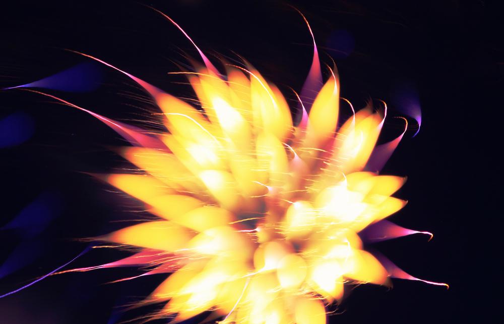 Fireworks2013_2.jpg