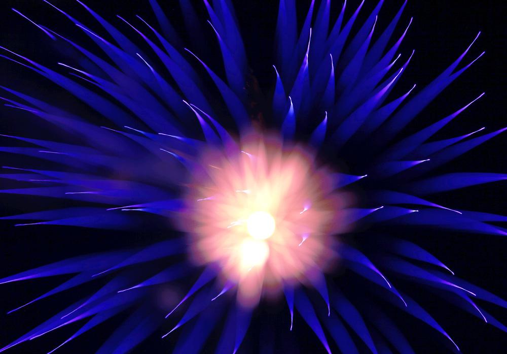 Fireworks2013_6_sm.jpg
