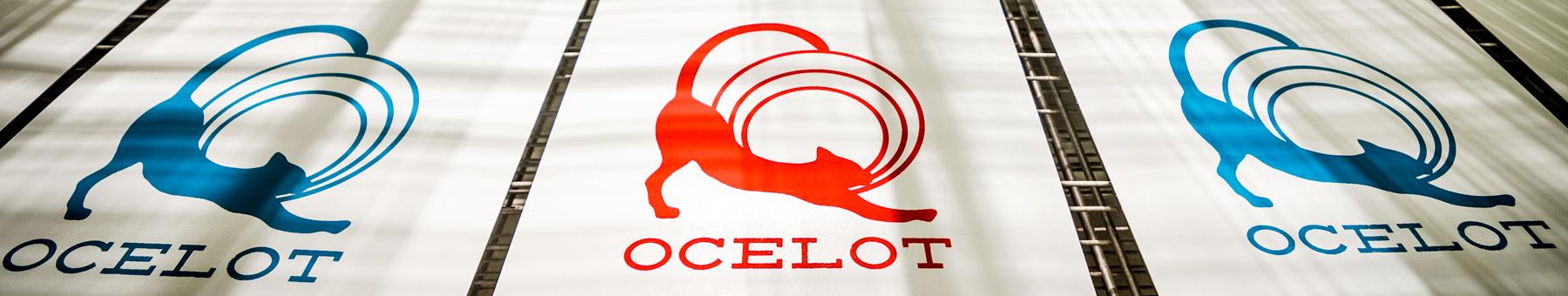 Ocelot Print Shop