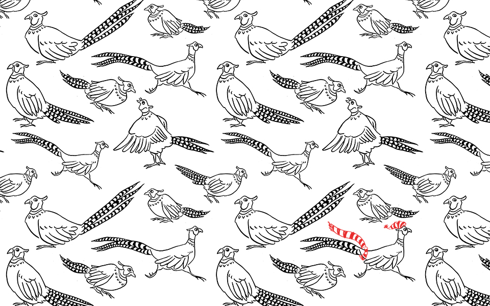 Hand drawn pheasant pattern