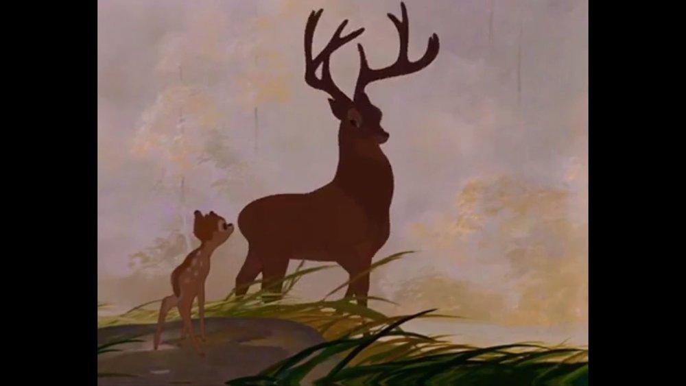 332 Bambi - Prince2.jpg