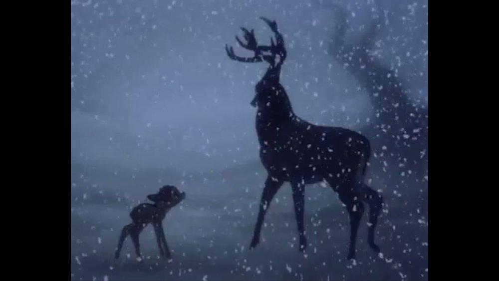 332 Bambi - Prince3.jpg