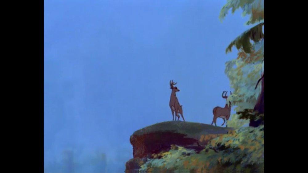332 Bambi - Prince4.jpg