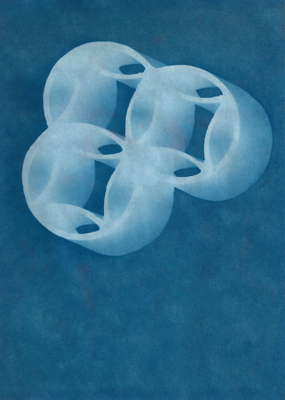 cyanotype flower frog.jpg