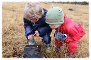 NATURE INVESTIGATIONS