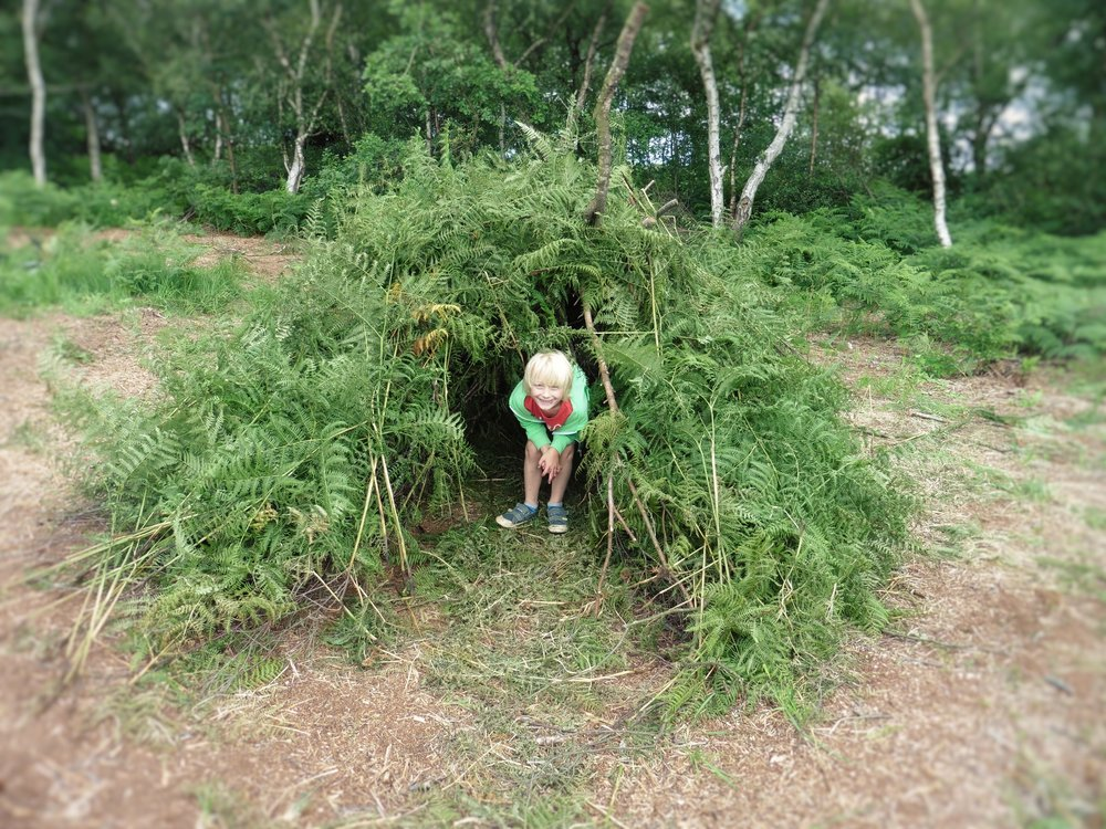 Den Building at Gorse Covert Mounds late Summer