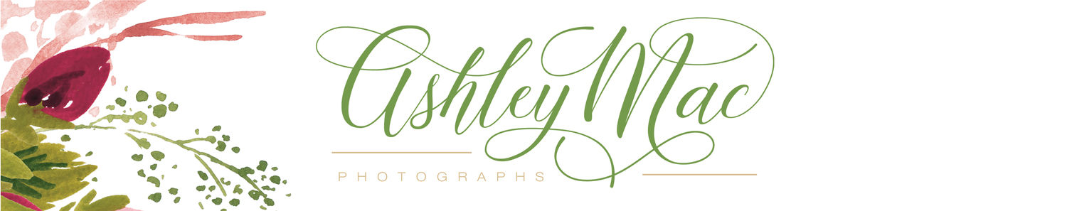 Ashley Mac Photographs- NJ Wedding Photographers