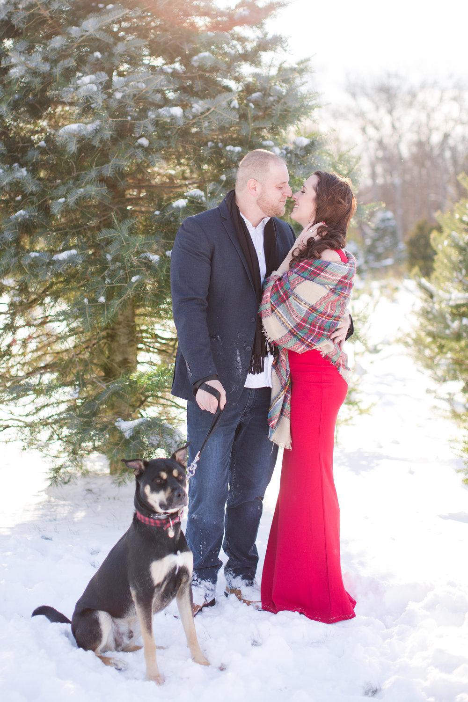 Whitney & Matt // Engaged // Winter Christmas Tree Farm — Ashley Mac ...