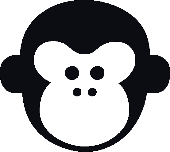 WE ARE MONKEYS