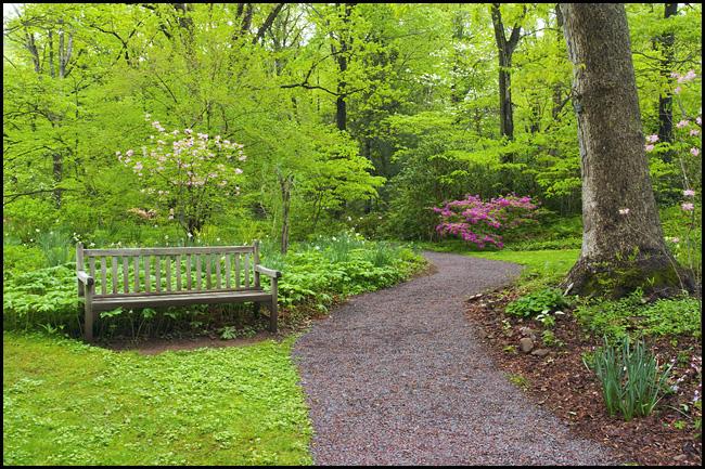 DSC07042 bench scene.jpg