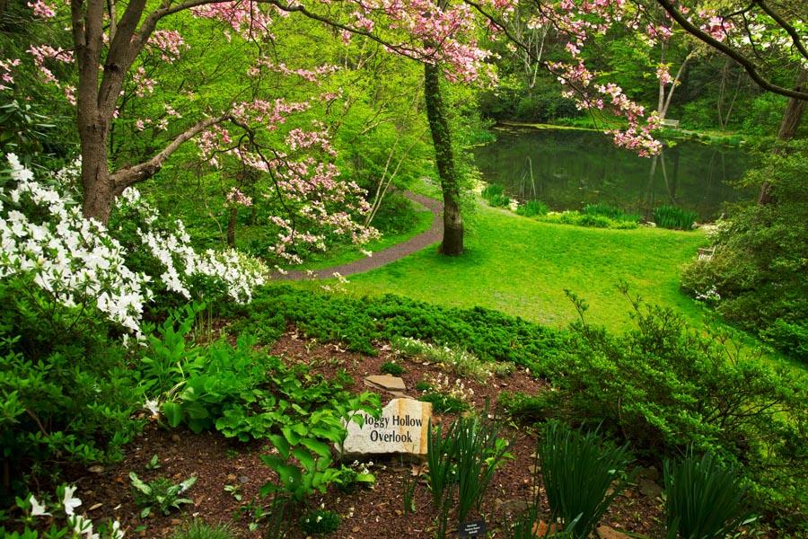 Spring LJB April 12.jpg