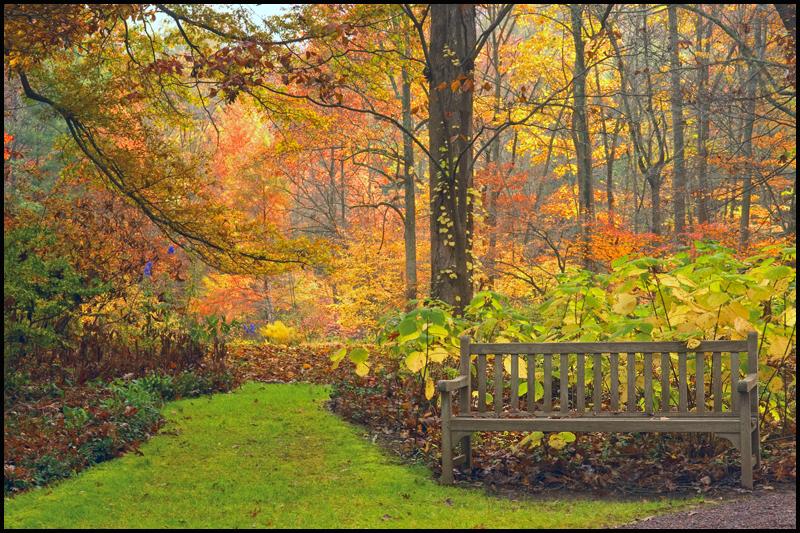 Fall LJB October 6.jpg