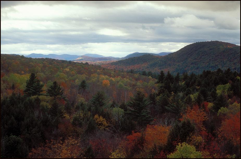 Adirondack Vista bigger.jpg