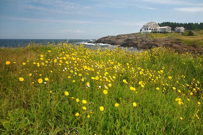 Monhegan Island.jpg
