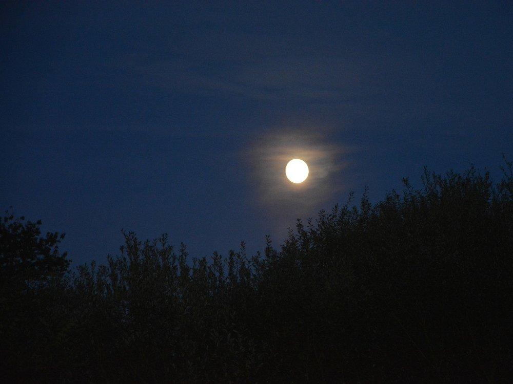 night-landscape-2814605_1706x1280.jpg