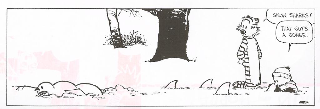 snow-sharks-cartoon