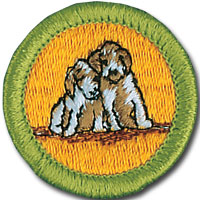 Dog_Care.jpg