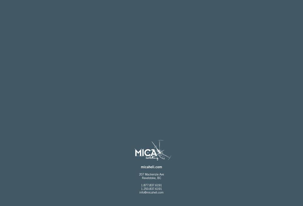 MICA_brochure2014_web7.jpg