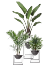 FAUX PLANTS.png