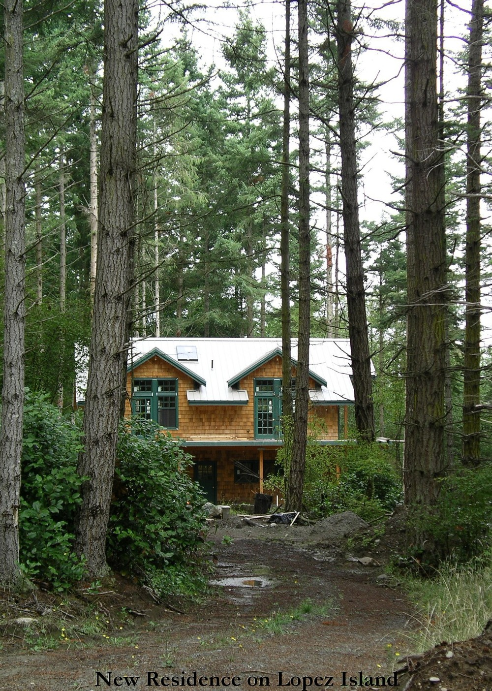 1 Lopez Island House - In the woods.JPG
