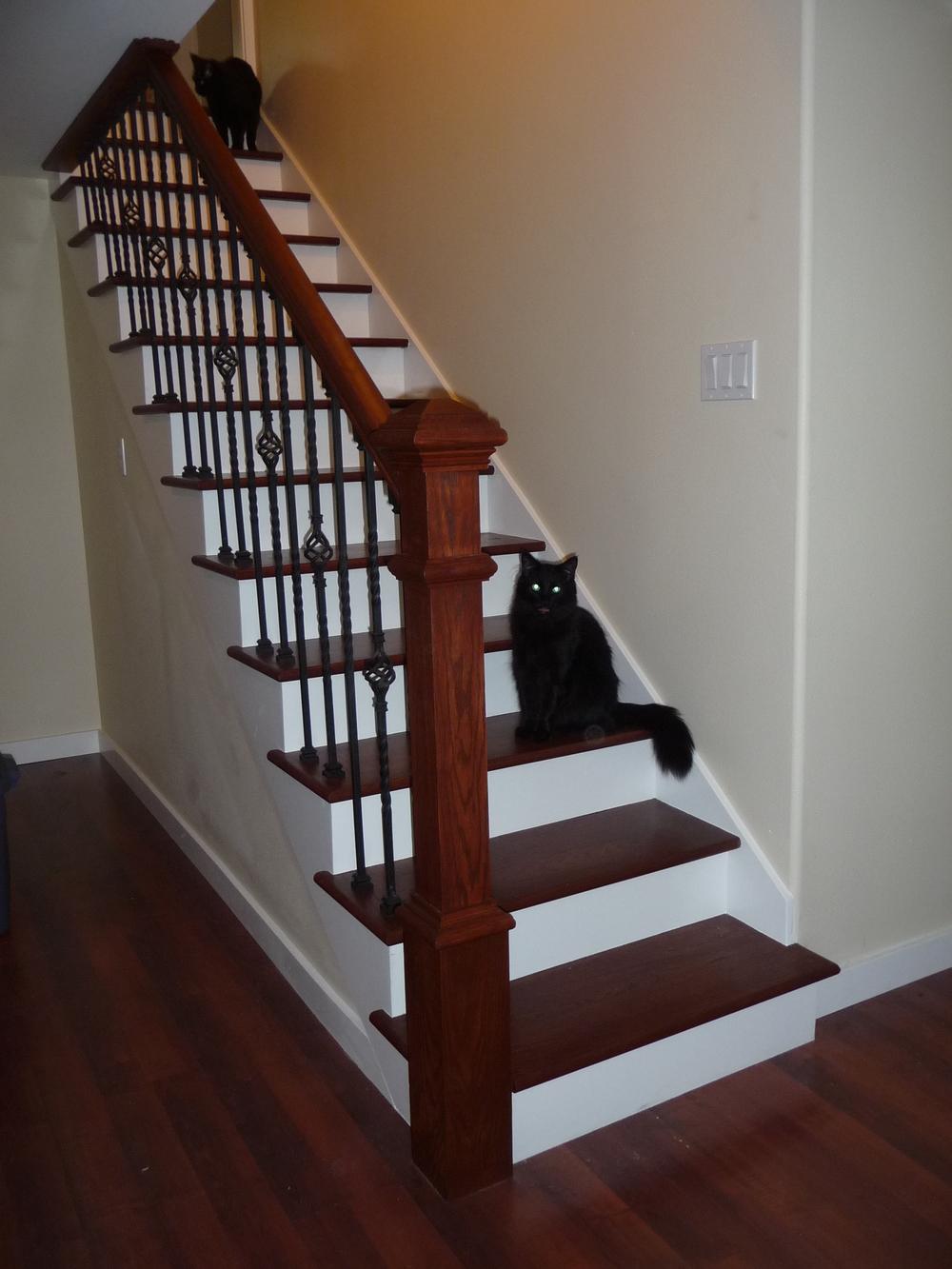 13098 Basement Stair.JPG