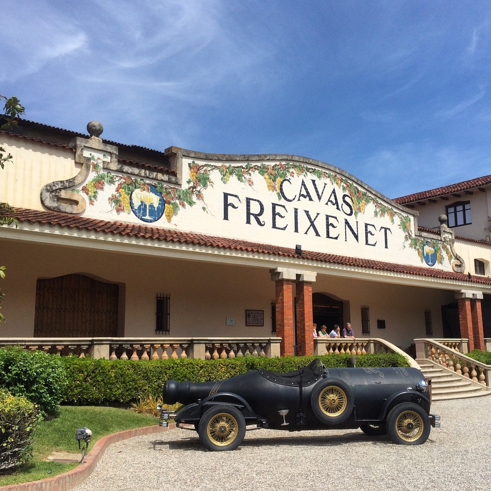 cava freixenet - just outside the sant sadurni train station