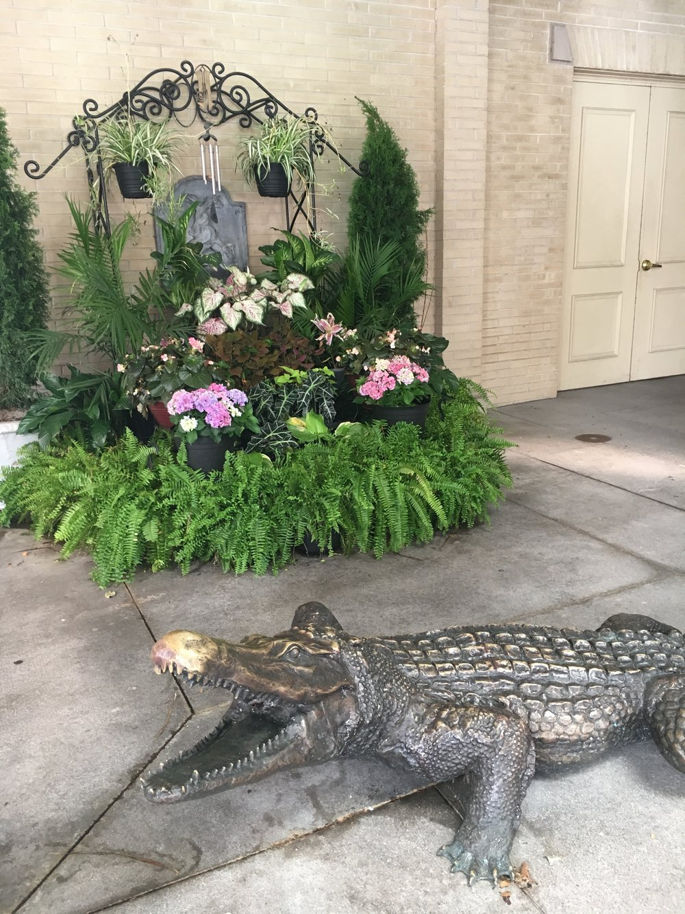 The hotel used to have live alligators at one point. Thankfully, no more!